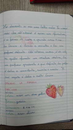 La descrizione parte seconda: Descrivere oggetti naturali e artificiali - quarta-italiano-ottobre - Maestra Anita Bullet Journal, Education, Alphabet, Spring, School, Onderwijs, Learning