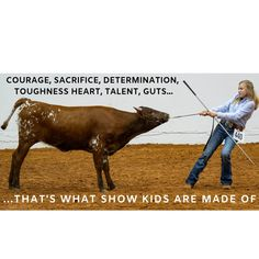Livestock Kids, Show kids, Youth ExhibitorsYou can find Showing livestock and more on our website.Livestock Kids, Show kids, Youth Exhibitors Show Cows, Show Horses, Cow Puns, Fort Worth Stock Show, Show Steers, Farm Humor, Animal Quotes, Cow Quotes, Livestock Farming