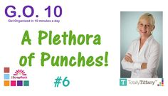 Go-10 Lesson 6 Craft Punch Organization and Storage