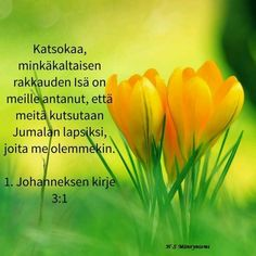 Raamatunpaikkoja johanneksen kirje raamattu bible finnish