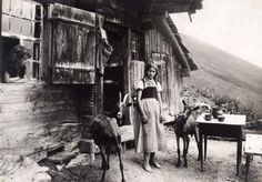 The Last of the Granny Witches from Appalachian Ink ~ Home of Anna Wess, Writer & Ghost Chaser