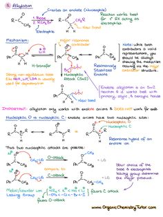 Chemistry 592364157219769737 - Alkylation of enolates Source by Organic Chemistry Tutor, Organic Chemistry Reactions, Chemistry Study Guide, Chemistry Lessons, Chemistry Basics, Chemistry Classroom, Teaching Chemistry, Science Chemistry, Science Education