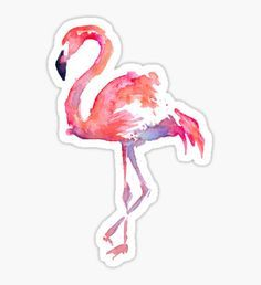 """""""Flamingo"""" Stickers by sarahvinton Stickers Cool, Tumblr Stickers, Phone Stickers, Printable Stickers, Planner Stickers, Tumblr Png, Homemade Stickers, Aesthetic Stickers, Overlays"""