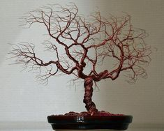 """Explore our internet site for additional information on """"metal tree wall decor"""". It is actually a superb spot to learn more. Leaf Wall Art, Metal Tree Wall Art, Metal Art, Copper Wire Art, Wire Tree Sculpture, Wire Sculptures, Sculpture Ideas, Twisted Tree, Tree Wall Decor"""