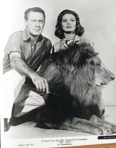 William Holden - The Lion (1962)