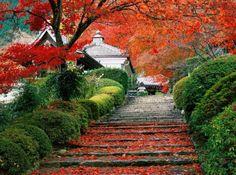 Paisajes de Japón |