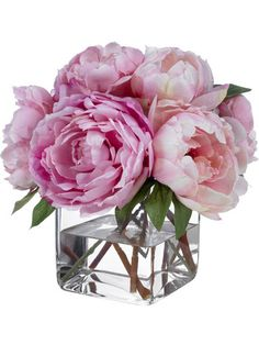 Pink Champagne Peonies by Diane James Home