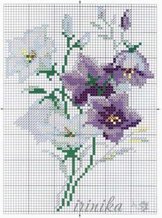 (5) Gallery.ru \/ la Foto #135 - las Flores 1 - irinika