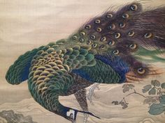 Peacock Painting, Peacock Art, Animal Skeletons, National Museum, Junk Journal, Lion Sculpture, Statue, Bird, Wallpapers