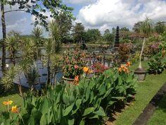 Beautiful water palace Tirta Gangga close to Amed, Bali