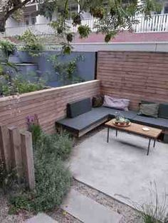city backyard in Amsterdam with concrete terrace