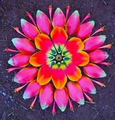 Flower pover Mandalas