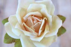Large Gumpaste Rose