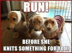 Run before she knits something for you (weiners.)