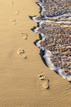~Footprints in the sand