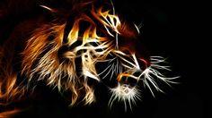 Tiger Wallpaper 3d Desktop