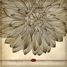 Ornate Card Designs | Serie of High Quality Graphics | CLIPARTO / 5