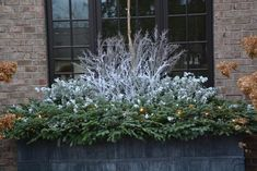 Christmas decoration - winter container arrangement foam base is essential to keep twigs stable