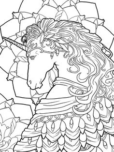 Magical Unicorns And Fairies Adult Coloring Book Unicorn Fairy Fantasy