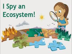 Types of ecosystems This PowerPoint will give you more detailed information about the types of ecosystems that we will study. Have a look and bear this in mind for an oncoming Project...