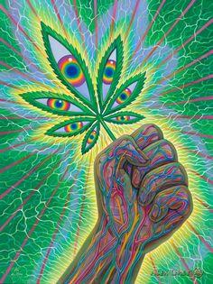 Cannafist - Tapestry Cannabis, Medical Marijuana, Art Gris, Alex Gray Art, Art Hippie, Art Visionnaire, Trippy Drawings, Psychadelic Art, Skull Art