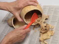 Como trabajar las calabazas para hacer adornos y artesanias
