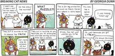 Breaking Cat News by Georgia Dunn for Aug 27, 2017 | Read Comic Strips at GoComics.com
