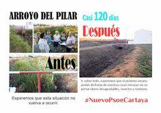 el tripartito que gobierna #Cartaya sólo acierta cuando rectifica. Por fin limpian del arroyo del Pilar tras las presiones de los vecinos