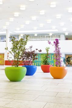 A bold, brightly coloured lightweight pot Family Garden, Outdoor Flooring, Potted Plants, Outdoor Lighting, Flower Pots, Planter Pots, Lights, Street, Patio Ideas