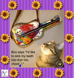 "Pawp Concert - Boo says, ""I'd like to sink my teeth into that mic. Chord""  #Guitar Purses ViolettesbyBecky.com"
