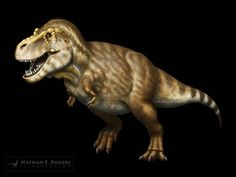 SCOTTY the largest tyrannosaurus by MicrocosmicEcology on DeviantArt College Of Charleston, Tyrannosaurus Rex, Prehistoric, Natural History, Great Britain, North America, Lion Sculpture, Creatures, Museum