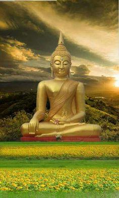 ปิยโต ชายตี โสโก ปิยโต ชายตี ภยํ ปิยโต วิปฺปมุตฺตสฺส นตฺถิ โสโก กุโต ภยํ _ความโศกเกิดจากสิ่งเป็นที่รัก ภัยก็เกิดจากสิ่งเป็นที่รัก ผู้พ้นจากสิ่งเป็นที่รักได้เด็ดขาด ย่อมไม่มีความโศกและภัยจากที่ไหนเลย _dhammapada