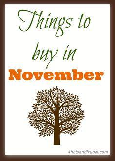 8 things to buy in November | Grab up these items while they are at a great price this month!