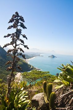 Prainha - Recreio, Rio de Janeiro. A wild beach full of natural wonders in the middle of town. By Giovani Cordioli.