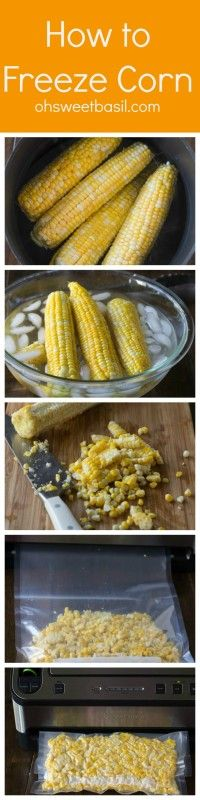 How to easily freeze corn and save money during the winter. ohsweetbasil.com