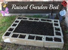 Raised bed garden. 10 cinder blocks!