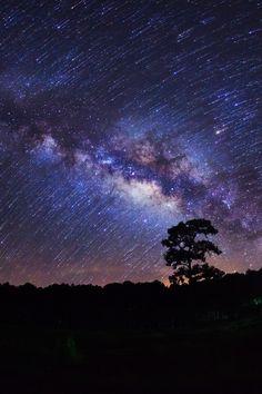 Milky Way at Phu Hin Rong Kla National Park in Phitsanulok, Thailand by Sarote Impheng
