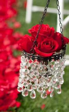 Cottage Charm ~ Red roses
