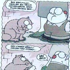 #omg #komikkarikatür #karikatür #belaltı #belaltıkarikatür #mizah http://turkrazzi.com/ipost/1518113954676869612/?code=BURbJk1FAns