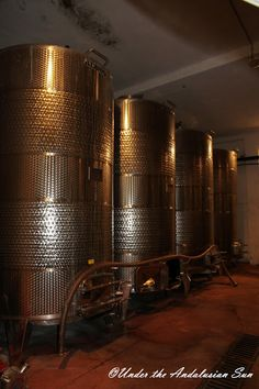 Wine touring in Tunisia