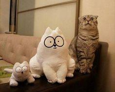 The Biggest Fan of Simon's Cat!