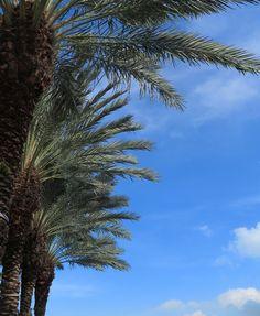 Blue Skies. Caymana Bay. Grand Cayman   #GrandCayman #Holiday #Travel #destinations #caribbean