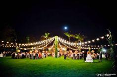 String lights illuminate this outdoor wedding.