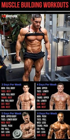 For anyone who is looking to pack on some serious mass, one of their top priorities will be to determine what the best training method is. Here are 5 workout set-ups to pack on serious muscle. Gym Workout Chart, Gym Workout Tips, Weight Training Workouts, Traps Workout, Fitness Studio Training, Gym Training, Shoulder Mass Workout, Chest Mass Workout, Chest Workout Women