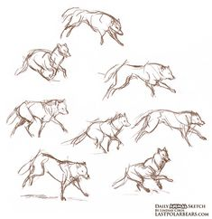 wolf tail gestures - Google Search