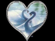 Ernesto Cortazar. Música para corazones enamorados-Luty Molíns musica para cuidar do coração!