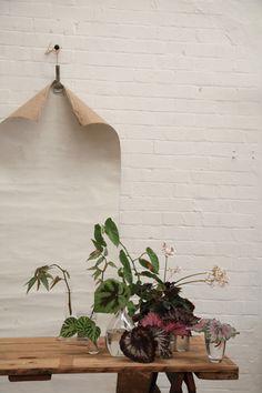 The Society Inc by Sibella Court | Meet The Maker Blog: Jardine Hansen | Jardine Botanic