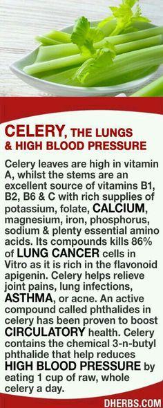 good thing i love celery