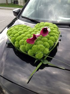 Car dash - Blumen Andrea - Your specialists for wedding & funeral floristry Wedding Car Decorations, Andreas, Funeral, Watermelon, Flowers, Blog, Funeral Flowers, Flower Jewelry, Wedding Ideas