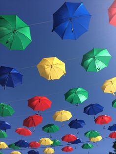 Parapluies volants...les invites 2014